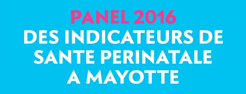 Panel des Indicateurs de santé périnatale à Mayotte (2016)